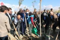 Başkan Şayir, Bebekler İçin Van'da Fidan Dikti