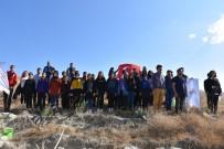 İskilip MYO Öğrencileri Fiden Dikti