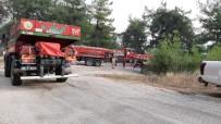 ORMAN İŞÇİSİ - Osmaniye'de Çıkan Orman Yangınında 3 Hektar Alan Yandı