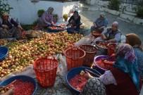 ÇıTAK - Sanayi Kenti Aliağa'da Nar Ekşisi Zamanı