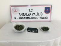 Antalya'da Hayvan Ağılında Uyuşturucu Yakalandı