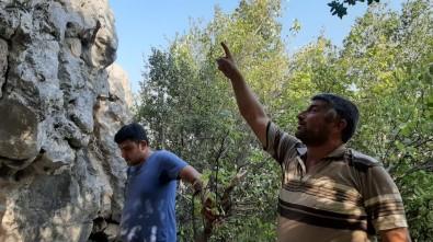 Kayalıkta Mahsur Kalan Keçi 3 Gündür Kurtarılmayı Bekliyor
