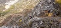 Dağda Mahsur Kalan Keçileri AFAD Kurtardı