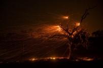 ARNOLD SCHWARZENEGGER - Kaliforniya Orman Yangınlarıyla Mücadele Ediyor