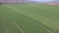 Tunceli'de 5 Bin 330 Dekar Tarım Arazisi Sulandı