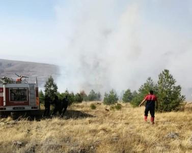 Anız Yangınından Alevler Ormanlık Alana Sıçradı