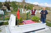 Havza'da Şehit Mezarlarına Çevre Düzenlemesi