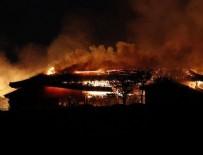 KYODO - Japonya'nın tarihi Shuri Kalesi yandı