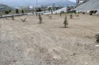 Karabük'te Ağaçlandırma Çalışması