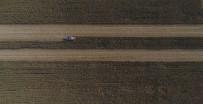 (Özel) Arpa Ve Buğdayın Yerini Mısır Aldı