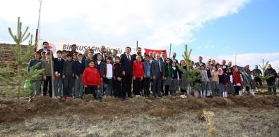 Vali Epcim Açıklaması 'Bayburt'taki Orman Varlığını Arttırmak İstiyoruz'