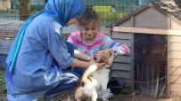 (Özel) Küçük Yaşta Eğitim, Hayvan Sevgisini Gelecek Nesillere Aşılıyor