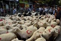 Çoban Festivali Renkli Görüntüler İle Başladı