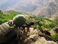 DERSIM - Kırmızı ve gri listedeki teröristler etkisiz hale getirildi