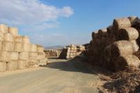 SERA ETKISI - Biyokütle Enerji İçin Bitkisel Atık Alımına Başlandı