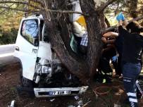 SARıLAR - Kargo Aracı Ağaca Çarptı Açıklaması 1 Yaralı