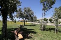 YUSUF ŞAHIN - ASÜ, EBYS İle Üç Yılda Bin 775 Ağacı Kesilmekten Kurtardı
