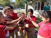 Kurtuluşlu Öğrencilerden Can Dostlara Ziyaret