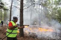 Türkiye'nin İlk Sivil Orman Yangını Söndürücüleri