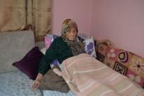 YUNANLıLAR - 106 Yaşındaki Şükriye Nine Atatürk'ü Anlattı
