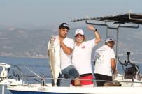 ALP KIRŞAN - Alanya'da En Büyük Balığı Yakalamak İçin Yarıştılar