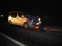 Minibüs Sürüye Daldı; Şoför Yaralandı, 30 Koyun Telef Oldu