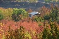 Her Açıdan - Yeşilyurt Sonbaharda Bir Başka Güzel