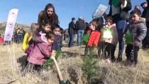 GUINNESS REKORLAR KITABı - '11 Milyon Ağaç; Bugün Fidan, Yarın Nefes' Programı