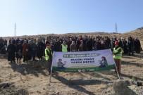 'Ak Kadınlar' 33 Bin Fidanı Toprakla Buluşturdu