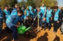 AKŞEHİR BELEDİYESİ - Akşehir'de 'Geleceğe Nefes' İçin Bin 453 Fidan