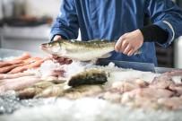 'Balık Her Yaşta Tüketilmeli'