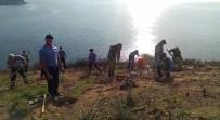 Burgazada'da Yanan Alanlar 'Geleceğe Nefes Ol' Projesi Kapsamında Ağaçlandırıldı