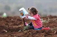 Bursa'da 236 Bin Fidan Toprakla Buluştu
