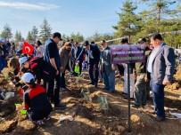 Daha Yeşil Bir Türkiye İçin Safranbolu Da Geleceğe Nefes Oldu