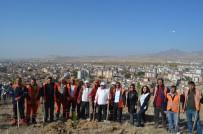 Develi'de 20 Bin Fidan Toprakla Buluştu