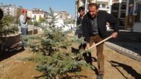 Ercişli İş Adamı Halis Bahçe 300 Fidanı Toprakla Buluşturdu