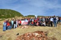 Gençler 'Daha Yeşil Bir Türkiye' İçin Fidan Dikti