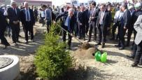 MİLLİ SAVUNMA KOMİSYONU - Isparta'da 'Bugün Fidan Yarın Nefes' Etkinliği Açıklaması 145 Bin Fidan Toprakla Buluştu