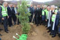 İzmir'de PKK'nın Yaktığı Alan Ağaçlandırılıyor