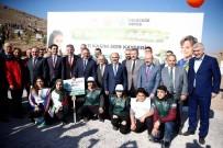 Kayseri'de 487 Bin 500 Fidan Toprakla Buluşturulacak