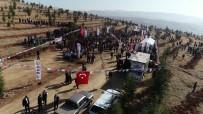 Kırıkkale'de 71 Bin Fidan Toprakla Buluşturuldu