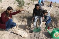 Kırka'da 25 Bin Fidan Toprakla Buluştu