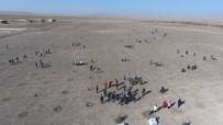 Kırşehir'de 50 Bin 600 Fidanı Toprakla Buluştu