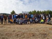 KARACAÖREN - Kütahya İhlas Vakfı Öğrencileri, 5 Bin Fidanı Toprakla Buluşturdu