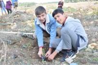TAHIR ŞAHIN - Lapseki'den Fidan Dikimi Kampanyasına Destek