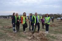 Milli Ağaçlandırma Gününde Biga'da Fidan Dikimi Yapıldı