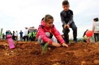 Muğla'da 200 Bin Fidan Toprakla Buluştu