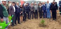 ORMAN İŞLETME MÜDÜRÜ - Nazilli'de 45 Bin Fidan 'Geleceğe Nefes' Sloganıyla Toprakla Buluşturuldu