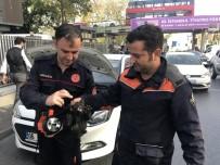 (Özel) Beşiktaş'ta İtfaiye Ekiplerinden Yavru Kedi Kurtarma Operasyonu