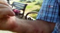 KALDIRIMLAR - (Özel) Büyükada'da Kıyıya Vuran Dalgalar Nedeniyle Vatandaşlar Ölümden Döndü